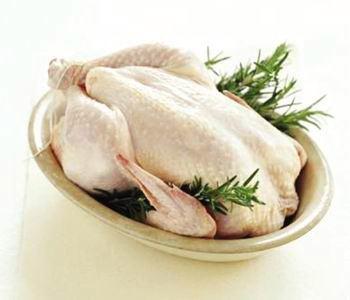 مرغ ارگانیگ در ایران تولید نمی شود