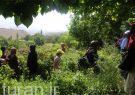 تبریز دارای ظرفیتهای گردشگری کشاورزی شهری است